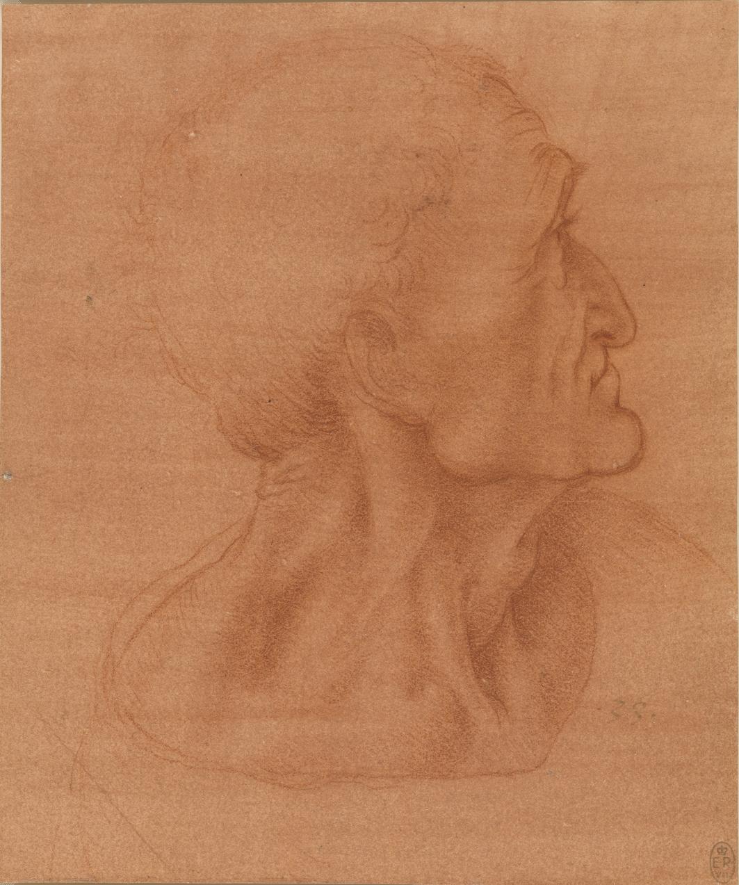 Leonardo da Vinci - Studie voor het hoofd van Judas