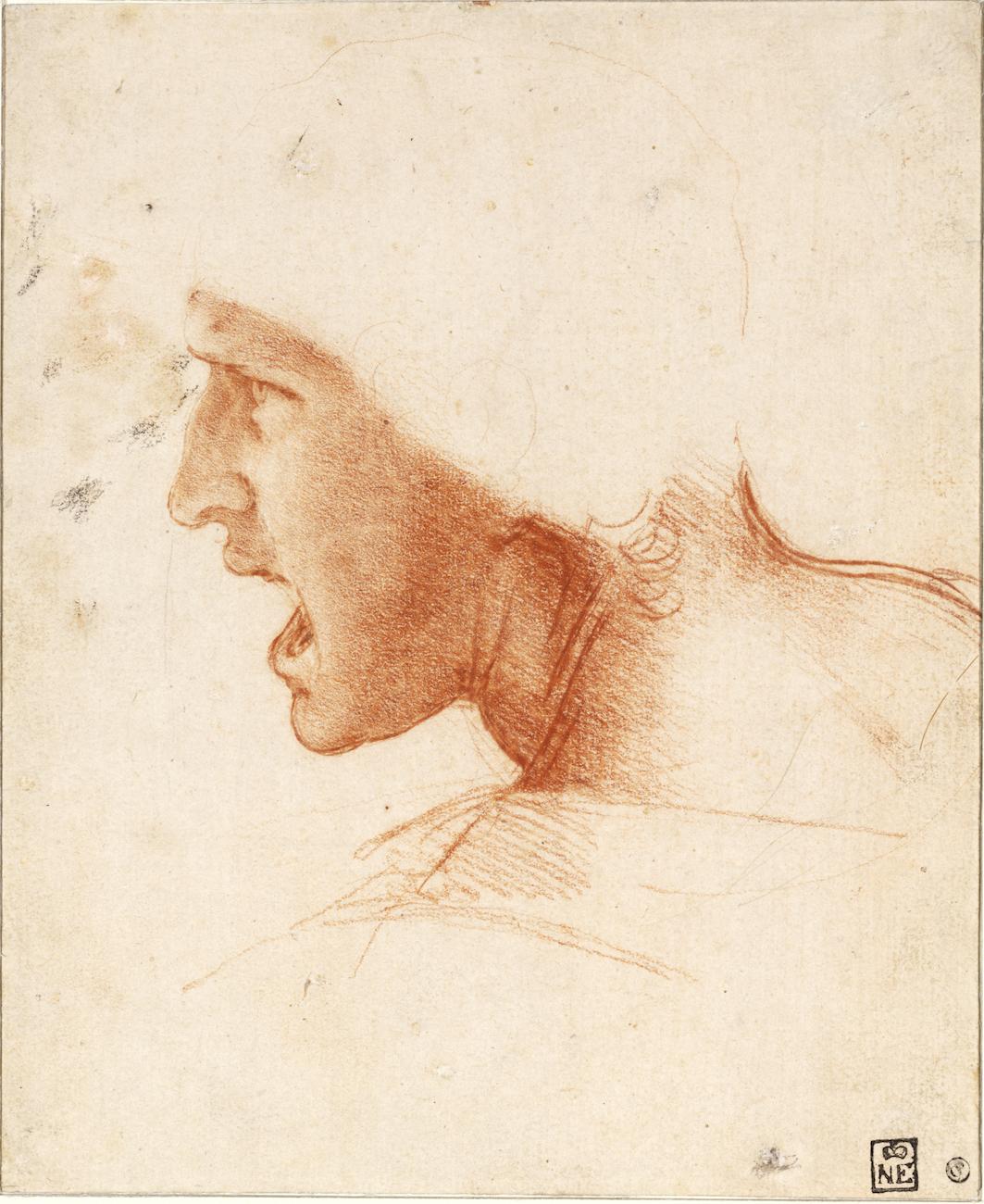 Leonardo da Vinci - Krijger