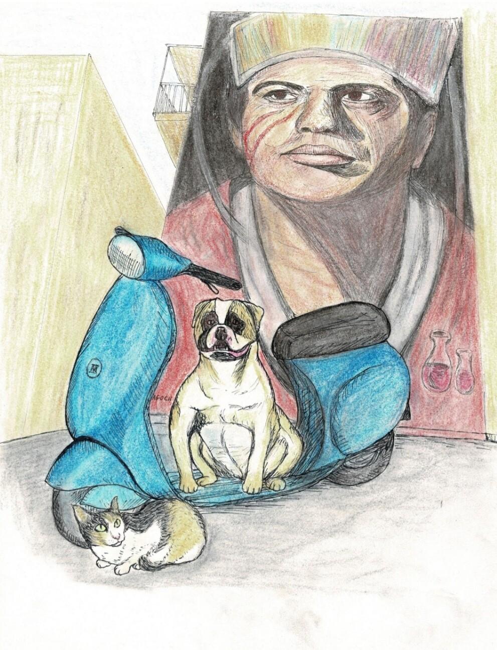 Verdwaald in Napels -- poes Nola geïllustreerd door Leny Boerstra
