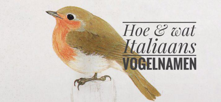Vogelnamen in het Italiaans